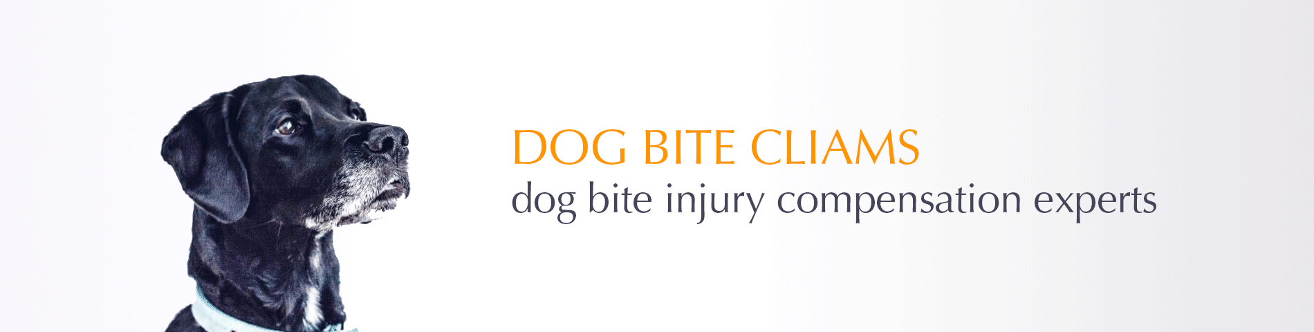 Dogbite mental trauma claim
